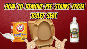 How To Remove Urine Stains Off Toilet Seat