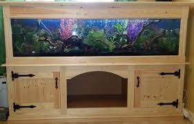 picture of d i y aquarium wooden pine stand