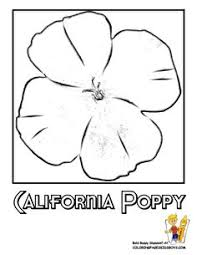 Small Picture California Poppy Flower Printables At Yescoloring Free Coloring