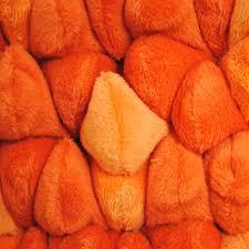 orange pebble cushion