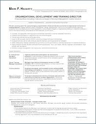 Agile Resume Adorable Agile Business Analyst Template Objective For Free Templates It