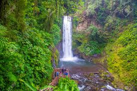 la paz costa rica march 22 waterfall at a tropical rainforest in la paz waterfall gardens costa rica on march 22 2016 la paz waterfall gardens is the