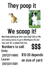 Missing Poster Generator Template Pet Dog Flyer Person Word