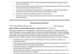 Resume Summary For Customer Service Cover Letter Job Resume Sales
