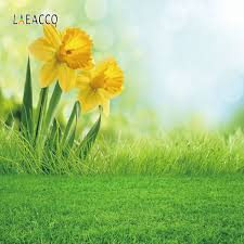 <b>Laeacco Spring Nature</b> Scenery Greenland Yellow Flowers ...