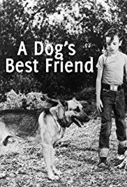 a dog s best friend imdb a dog s best friend poster