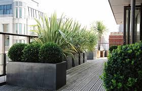 Planters On Roof Terrace Rooftop Design Vertical Garden