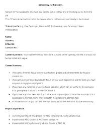 Great Example Resumes Best Great Examples Of Resumes Mycola