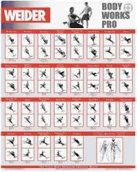 Weider Body Works Pro Chart 36 Best Weider Ultimate Body Works Images Weider Ultimate