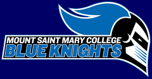 Image result for mount st mary's college