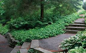 design a garden. Contemporary Garden 2 Watch Your Steps And Design A Garden Fine Gardening Magazine