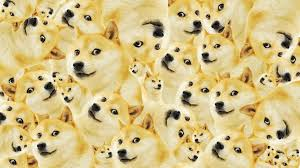 doge wallpaper hd. Perfect Wallpaper 2880x1933 Doge Wallpapers  HD In Wallpaper Hd