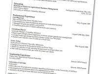 Effective Resume Writing Elegant How To Write Effective Resume Nice