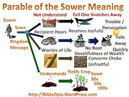 the parable of sower. Modren Parable The Parable Of The Sower Explained Mind Map Throughout Of M