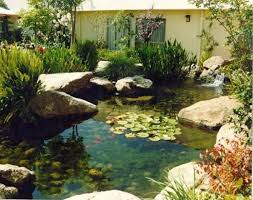 Small Picture Backyard Pond Ideas Small Ideas About Pond Design Backyard Pond
