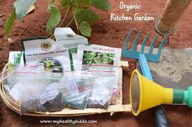 this is my 100th post and i am glad to take you a tour into my kitchen garden in india i started growing greens just for my baby