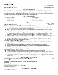 fake resume examples