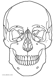 Small Picture Anatomy Coloring Pages Of The Skull Printable Coloring Sheets