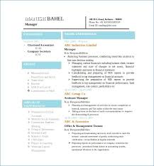 Experienced Accountant Resume Format | Resume Writing Service