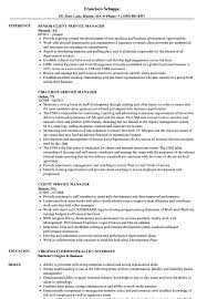 Customer Services Manager Resume Objectives Mt Home Arts