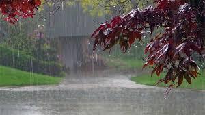 રાજ્યમાં 48 કલાક સુધી પડશે ભારે વરસાદ: હવામાન વિભાગ