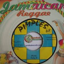 Natty B Archives Rare Vinyl Collectible Records Reggae