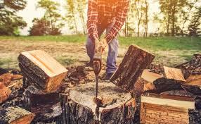 Das Richtige Brennholz Ihr Kachelofen Vom Hafnermeister
