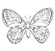 Small Picture Bug Coloring Pages For Kids Free Page Printable Within Computer