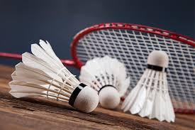 Résultats de recherche d'images pour «enfant et adulte jouant au badminton»