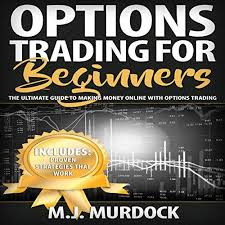 Making Flyer Online Options Trading For Beginners The Ultimate Guide To Making Money