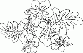 Small Picture Coloring Pages Of Hawaiian Flowers 17573 plaaco