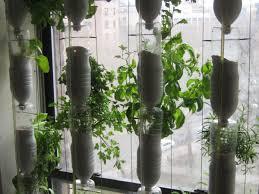 window farming growing your own herb garden in your window e image via windowfarms