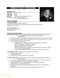 Sample Of Cv For Job Application Example Resume To Apply Job