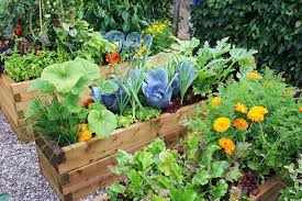 make the garden bed at your home easily