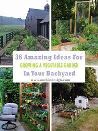 growing a vegetable garden
