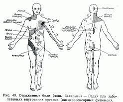 Скачать реферат по теме Влияние массажа на организм человека  Влияние массажа на организм человека реферат