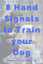 15 16 Best Sign Language For Dogs Images On Pinterest Dog