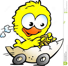 cute baby chicken clipart. Exellent Baby Cute Baby Chicken Driving In A Eggshell For Baby Chicken Clipart