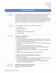 Information Technology Resume Sample Information Technology Resume Examples New Electronic Resume 29