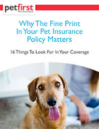 Medical Prescriptions - Why The Fine Print In Your Pet Insurance ...