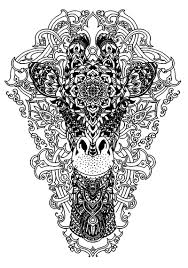 Head Of A Giraffe Giraffes Adult Coloring Pages
