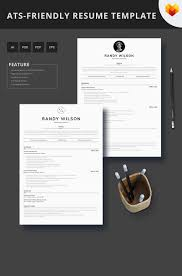 Front End Developer Ats Friendly Resume Template 66450