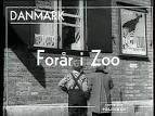 gamle kvinder søger unge mænd zoo ebeltoft