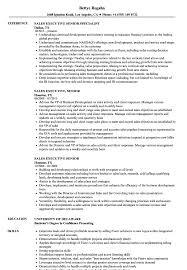 Technology Sales Resume Sales Executive Senior Resume Samples Velvet Jobs