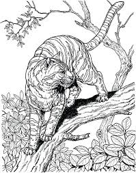Animal Coloring Pages Hard Animals Tiger Images Abstract Difficult