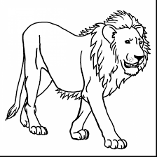 Printable Jungle Animal Coloring Pages With Colorings Free Animals