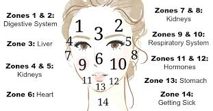 Pimples On Body Chart What Is Your Acne Telling You