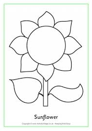 Small Picture Sunflower Colouring Page