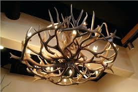 antler chandelier image of deer antler chandelier fan antler chandelier uk