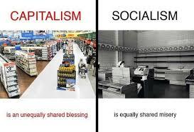 socialism vs capitalism essay format essay title socialism vs capitalism essay